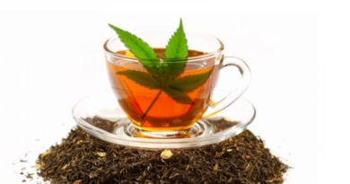 Marijuana Tea Recipe
